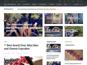 sparkle-magazine-theme-for-wordpress